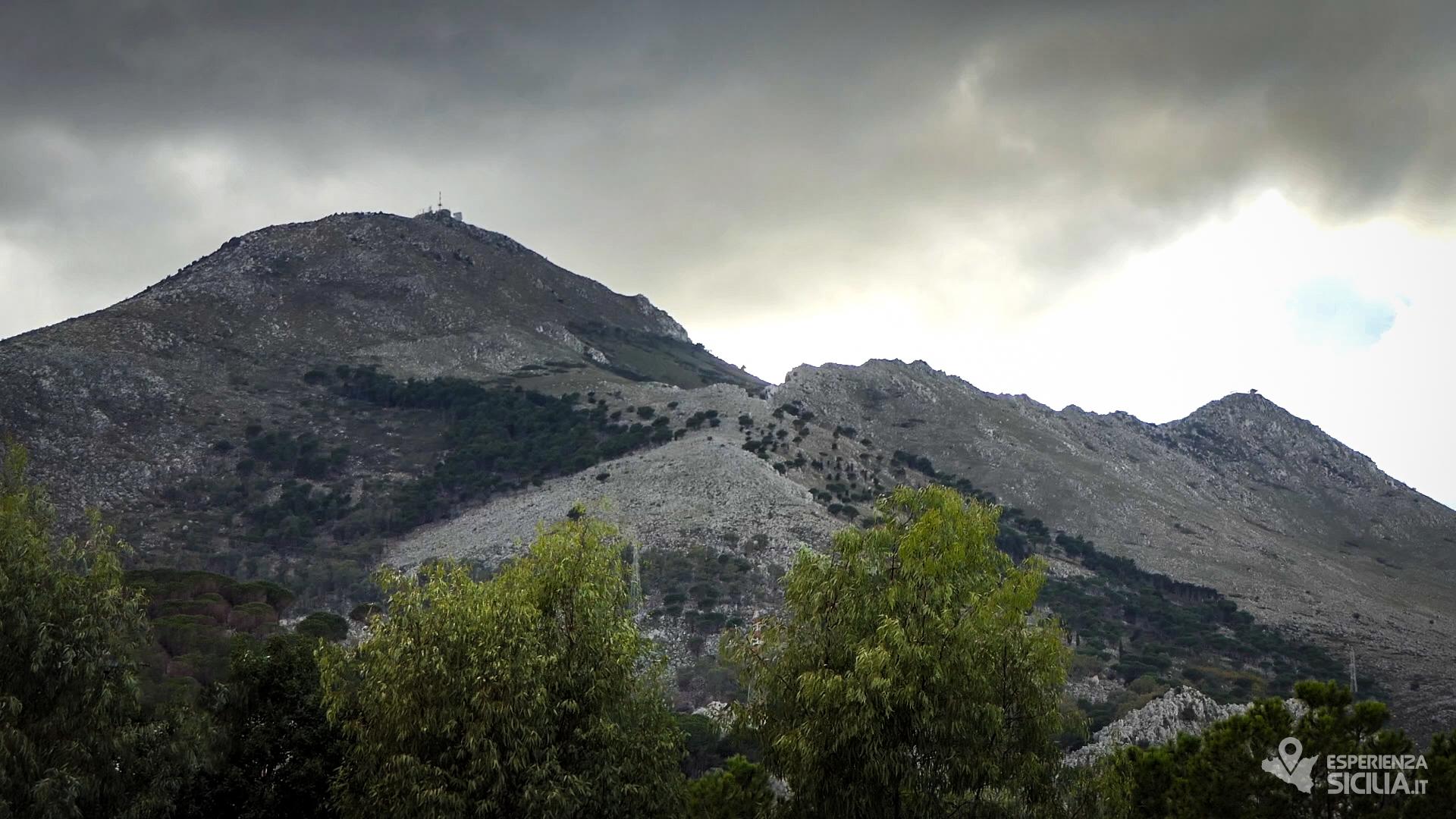 IL RESPIRO DEL TEMPO. Il Gigante di Palermo